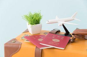 旅行カバンと飛行機の模型